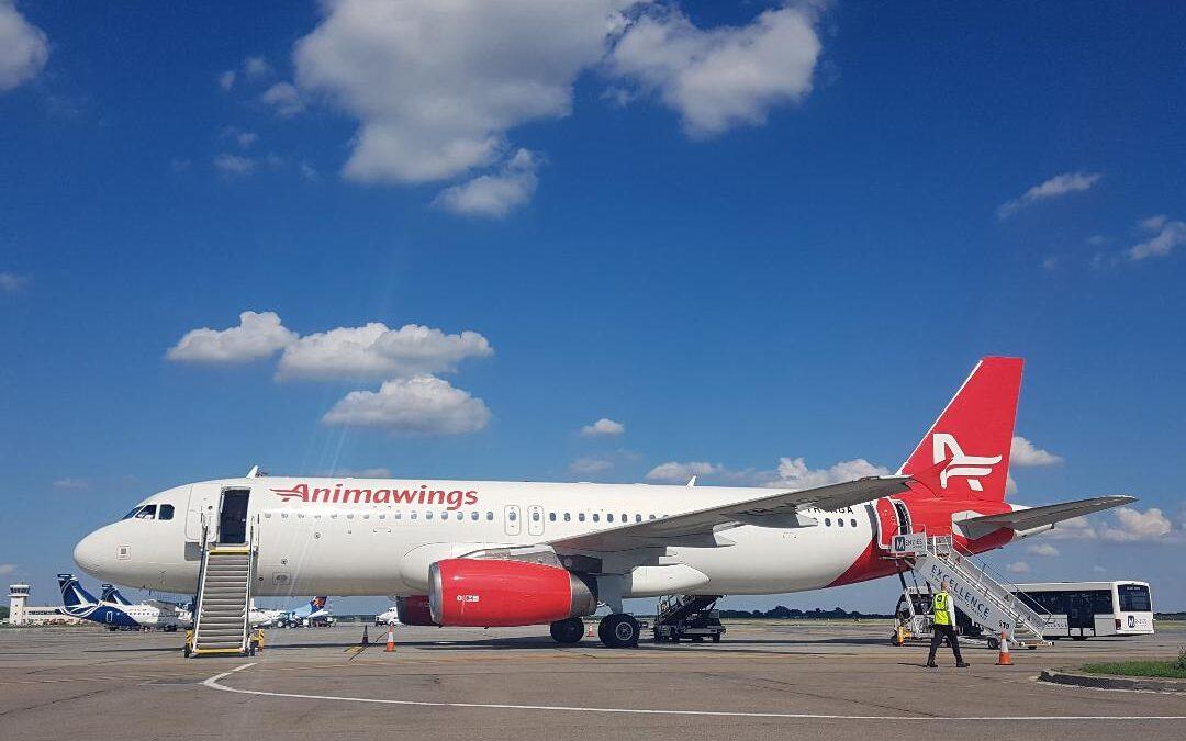AEGEAN Airlines își mărește cota de participaţie ȋn Animawings, consolidându-şi prezența pe piața aviatică românească